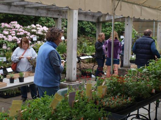 FlorAbundance Spring Plant Sale