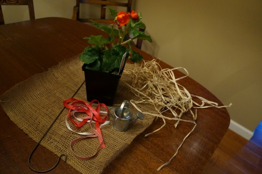 Burlap plant centerpiece/favor