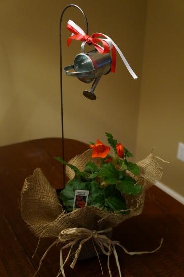 Burlap plant centerpiece
