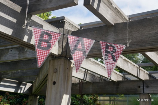 Gingham Party Pennant