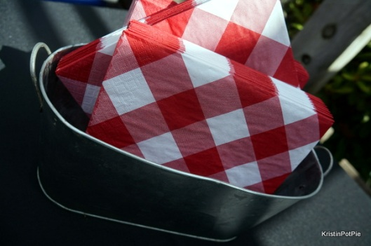 Red & White Gingham Napkins