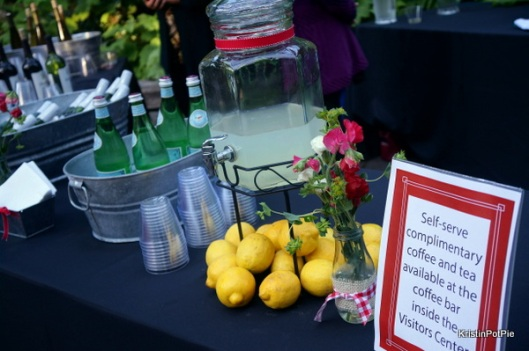 Summer Picnic Party Drink Station